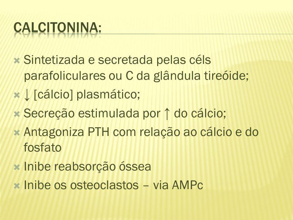 Calcitonina: Sintetizada e secretada pelas céls parafoliculares ou C da glândula tireóide; ↓ [cálcio] plasmático;